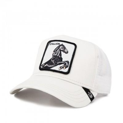 Stallion Baseball Hat, White