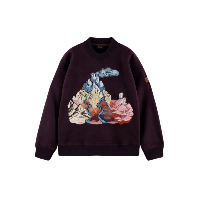 Sweater with embroidered...